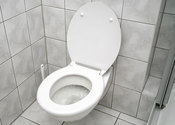 Main thumb low flow toilet 4